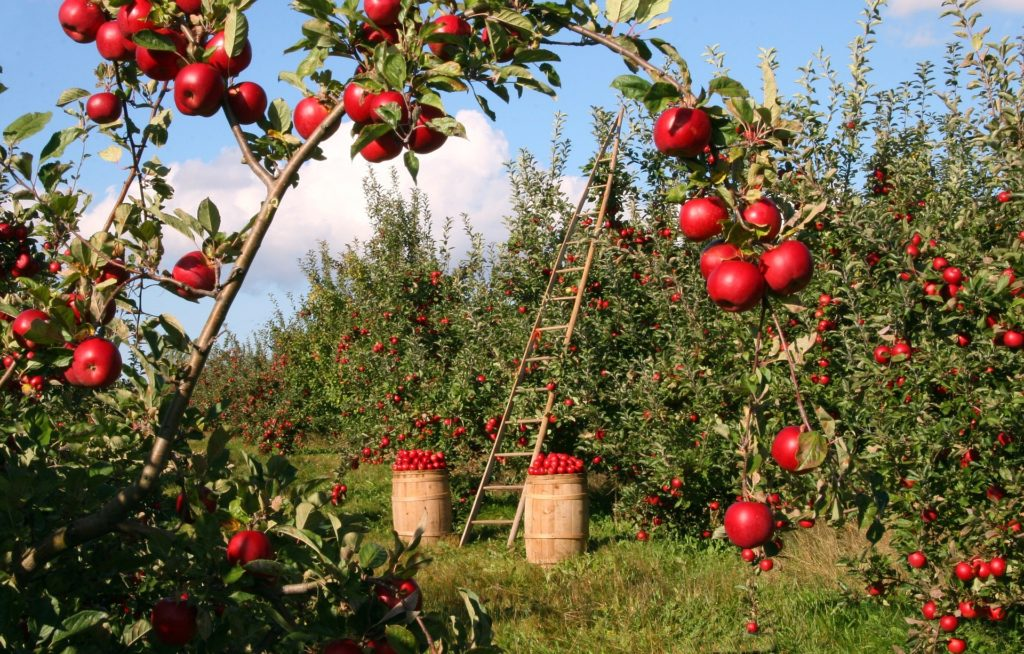 Crédit Agricole licencie 17 employés à Genève