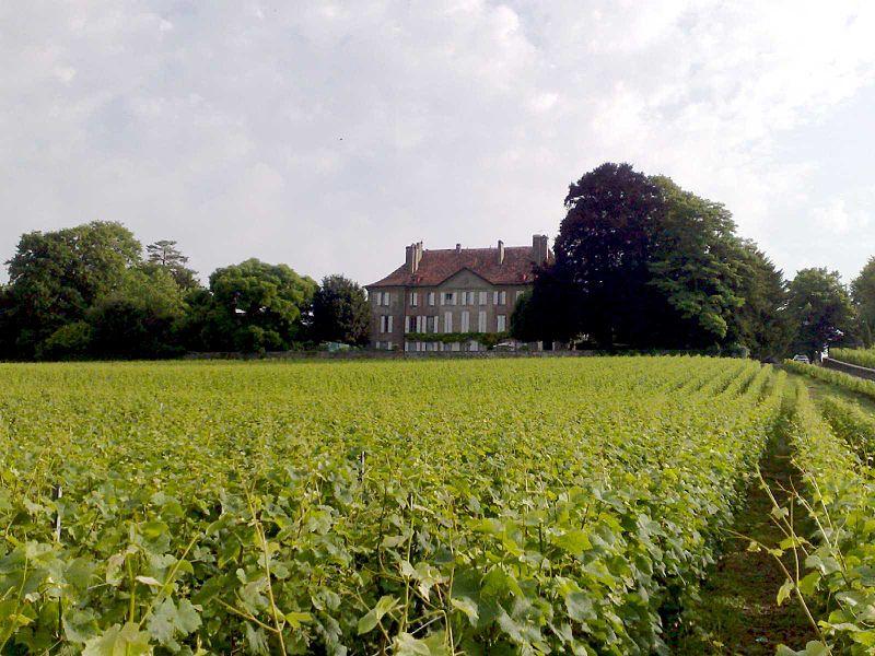 Saint-Saphorin-sur-Morges