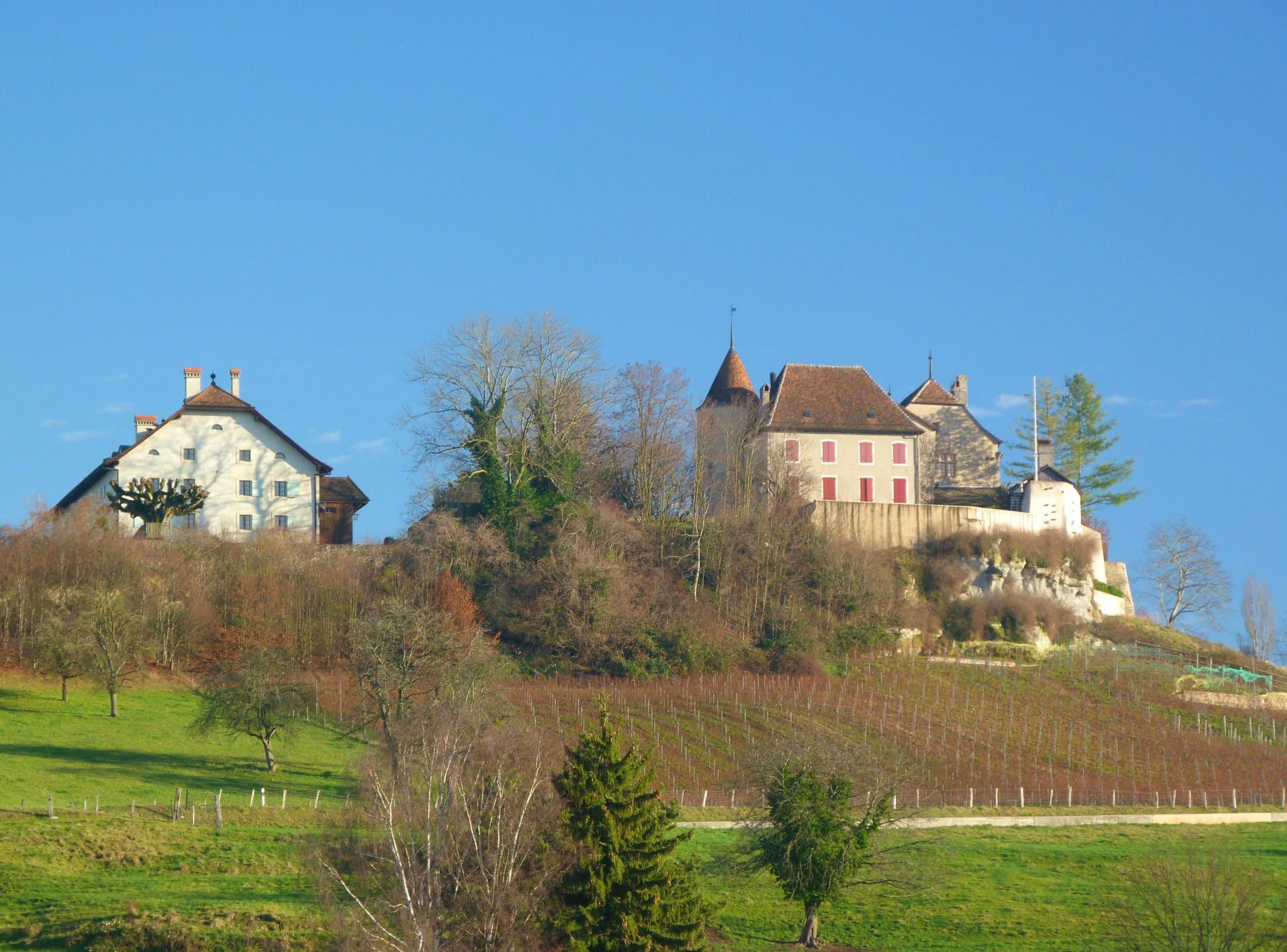 Château_de_Bavois