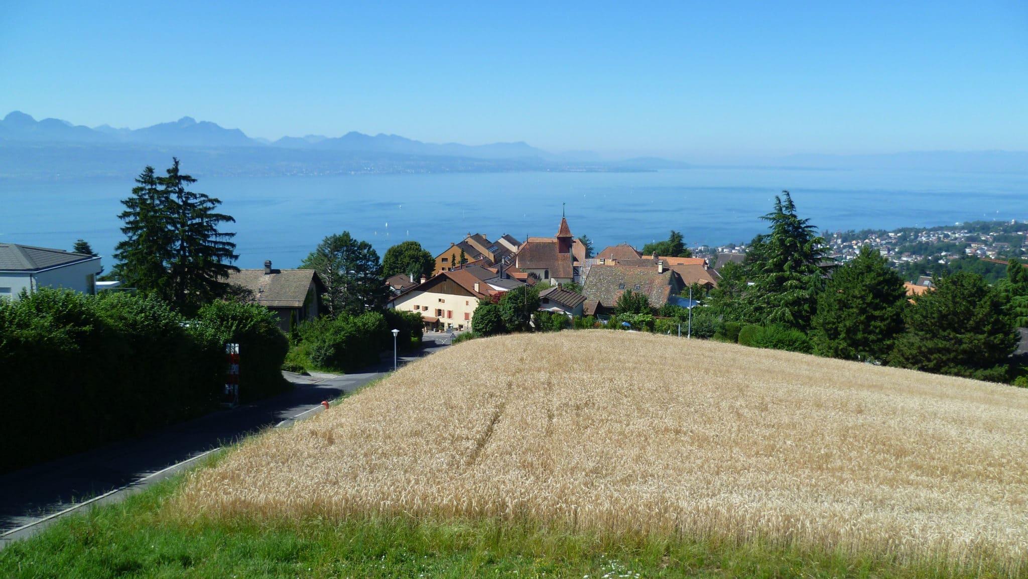 Belmont-sur-Lausanne
