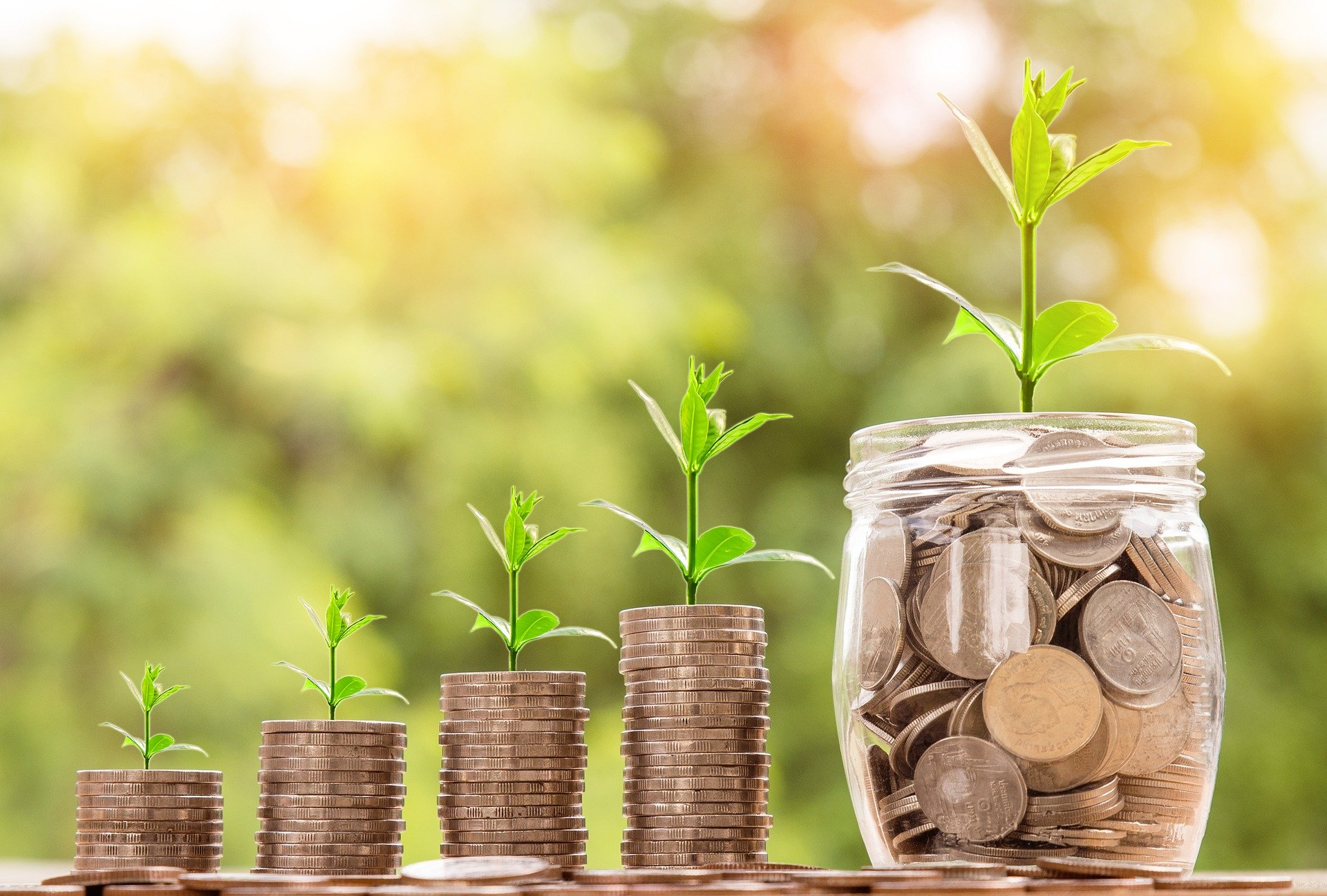 L'optimisation de son impôt sur le revenu